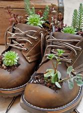 Getting Whimsical in the Garden – Word Garden