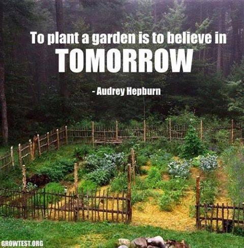 Garden & quote