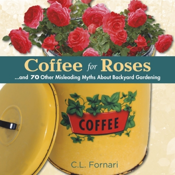 ST LYNN'S Coffee for Roses Cover