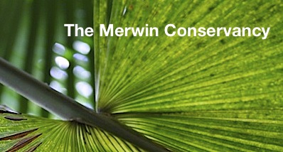 Merwin Conservancy